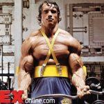 Arnold ötlete alapjaiban változtathatja meg a testépítést